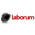 laborum